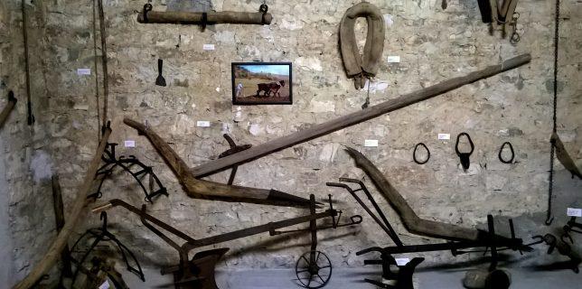 museo grano capofelice di fitalia